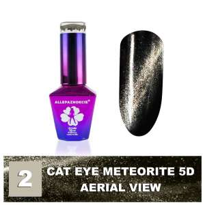 Lakier Hybrydowy - Colours by Molly - Cat Eye Meteorite 5D - 2 Aerial View - 10ml