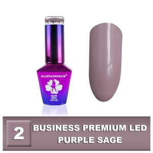Lakier Hybrydowy - Purple Sage 2 - BUSINESS PREMIUM LED - Colours by Molly - 10 ml