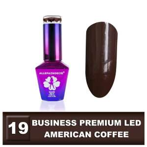 Lakier Hybrydowy - American Coffee 19 - BUSINESS PREMIUM LED - Colours by Molly - 10 ml