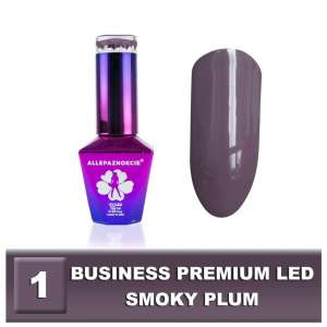 Lakier Hybrydowy - Smoky Plum 1 - BUSINESS PREMIUM LED -  Colours by Molly - 10 ml