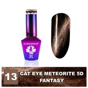 Lakier Hybrydowy - Colours by Molly - Cat Eye Meteorite 5D - 13 Fantasy - 10ml