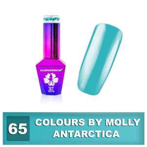 Lakier Hybrydowy - Antarctica 65 - Colours by Molly - 10 ml